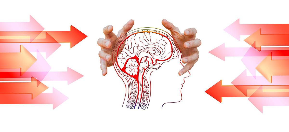 Counseling psicologico Individuale per adulti e adolescenti
